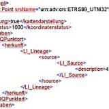 Auszug einer NAS-Datei im XML-Format