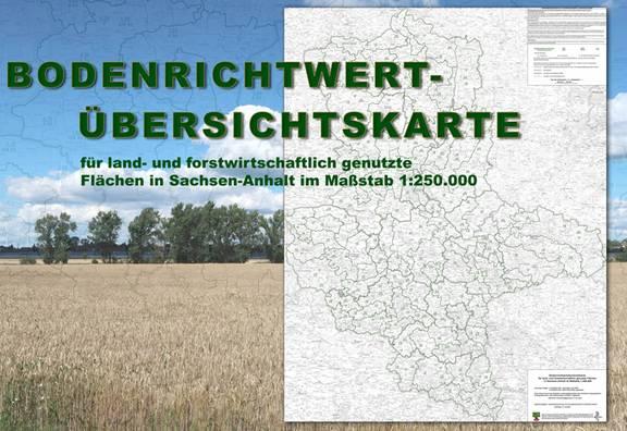 Bodenrichtwertkarte für land- und forstwirtschaftlich genutzte Flächen in Sachsen-Anhalt im Maßstab 1:250.000